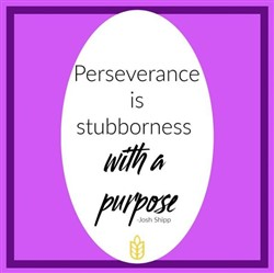 Perseverance is stubborness with a purpose