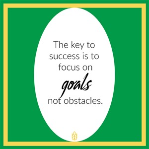 The key to success is to focus on goals not obstacles