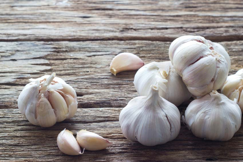 Bulbs and Cloves of Garlic