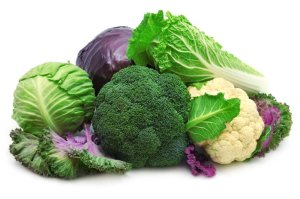 Brassica Species of Veggies