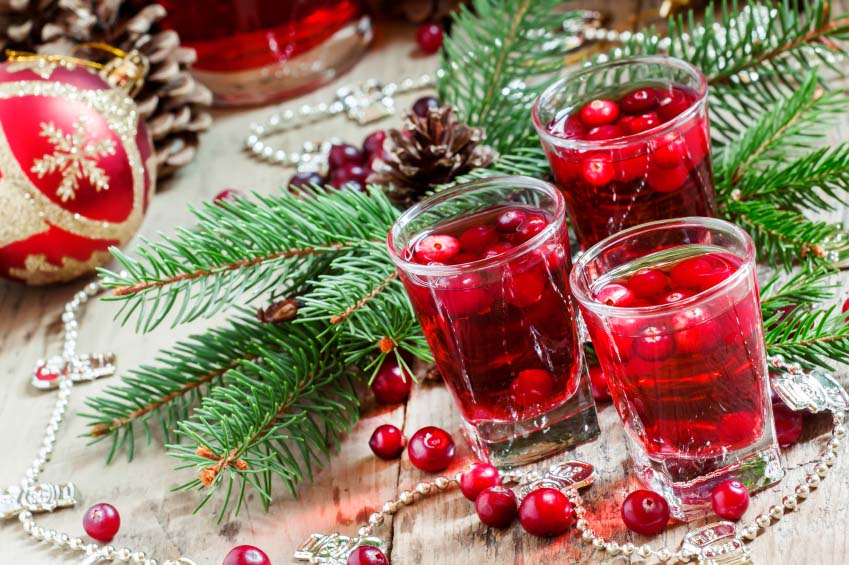 Holiday Cranberry Drink