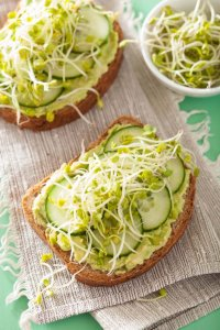 Bean Sprouts on Fresh Sandwich