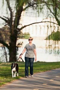 Lady Walking Dog in City Park