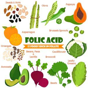 Foods Containing Folic Acid