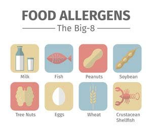 Graphic of The Big 8 Food Allergens