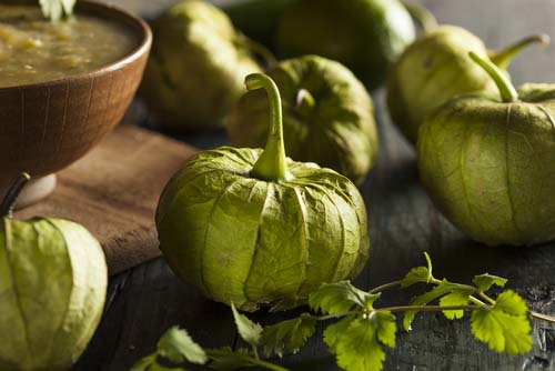 Fresh Tomatillos and Bowl of Sauce