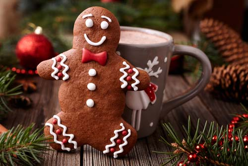ginger bread & hot chocolate