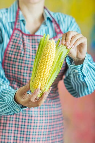 Cook Cleaning Fresh Ear of Corn