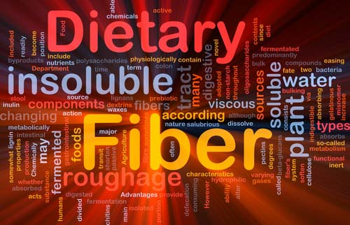 Graphic for Dietary Fiber